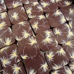 chocolat genin
